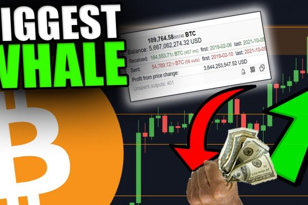 THE BIGGEST BITCOIN WHALE JUST SOLD BITCOIN [Should You Be Worried?…]
